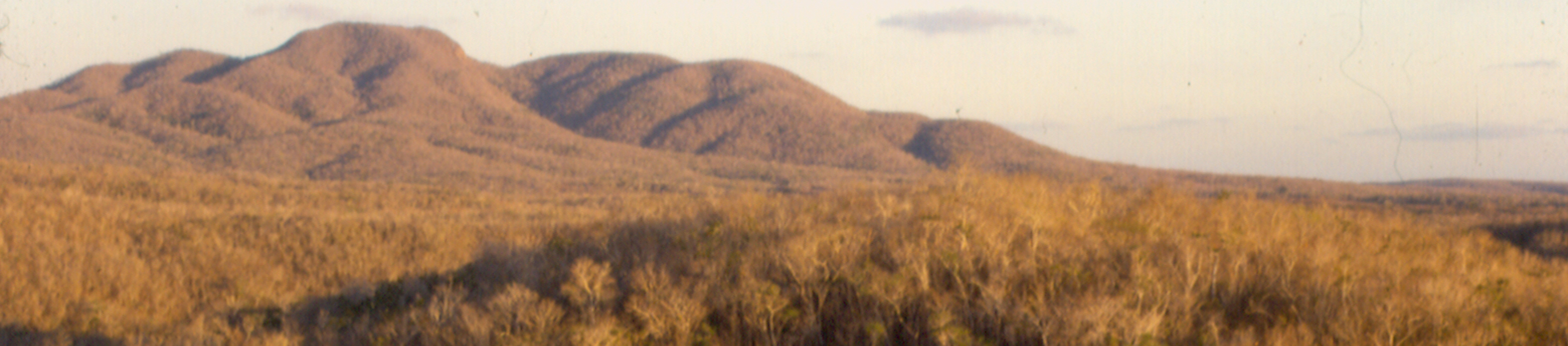 DMM-0185-copy_edited-1.jpg